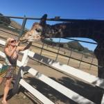 Malibu family vineyards 0185