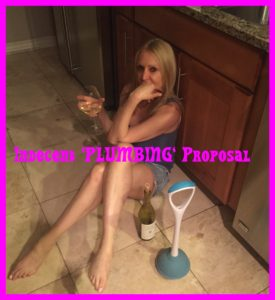 Indecent Plumbing Proposal